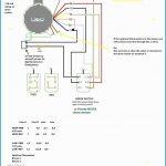 115 Volt Motor Wiring Diagram   Wiring Diagrams Hubs   Century Motor Wiring Diagram
