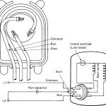 120 volt capacitor wiring diagram | wiring library single phase motor wiring  diagram with capacitor start
