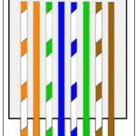 Cat 5E Wiring B   Wiring Diagrams Hubs   Cat 5 Wiring Diagram B