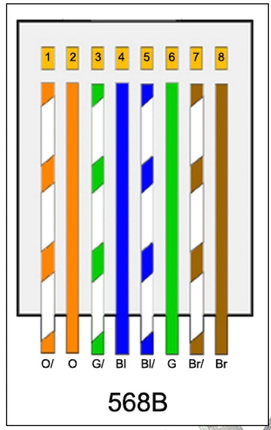 straight through cat5e wiring diagram 10 1 pluspatrunoua de \u2022