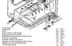 Cp Performance   Wiring Harness (Efi)   Mercruiser Wiring Diagram