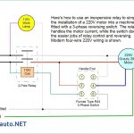 Drum Switch Wiring Schematic | Manual E Books   220V To 110V Wiring Diagram