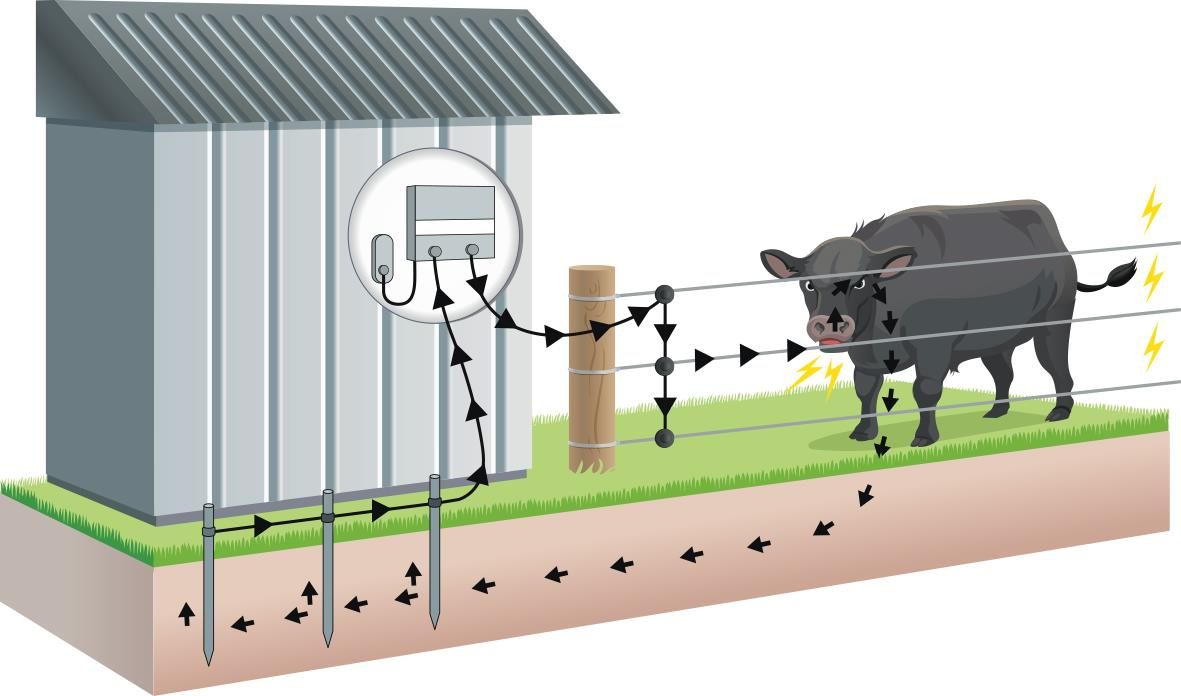 Electric Fencing Basics | Gallagher Electric Fence Usa - Electric Fence Wiring Diagram