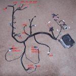 Gen 3 Ls1 Wiring Harness Diagram | Wiring Diagram   Ls1 Wiring Harness Diagram