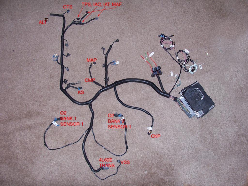 Gen 3 Ls1 Wiring Harness Diagram | Wiring Diagram - Ls1 Wiring Harness Diagram
