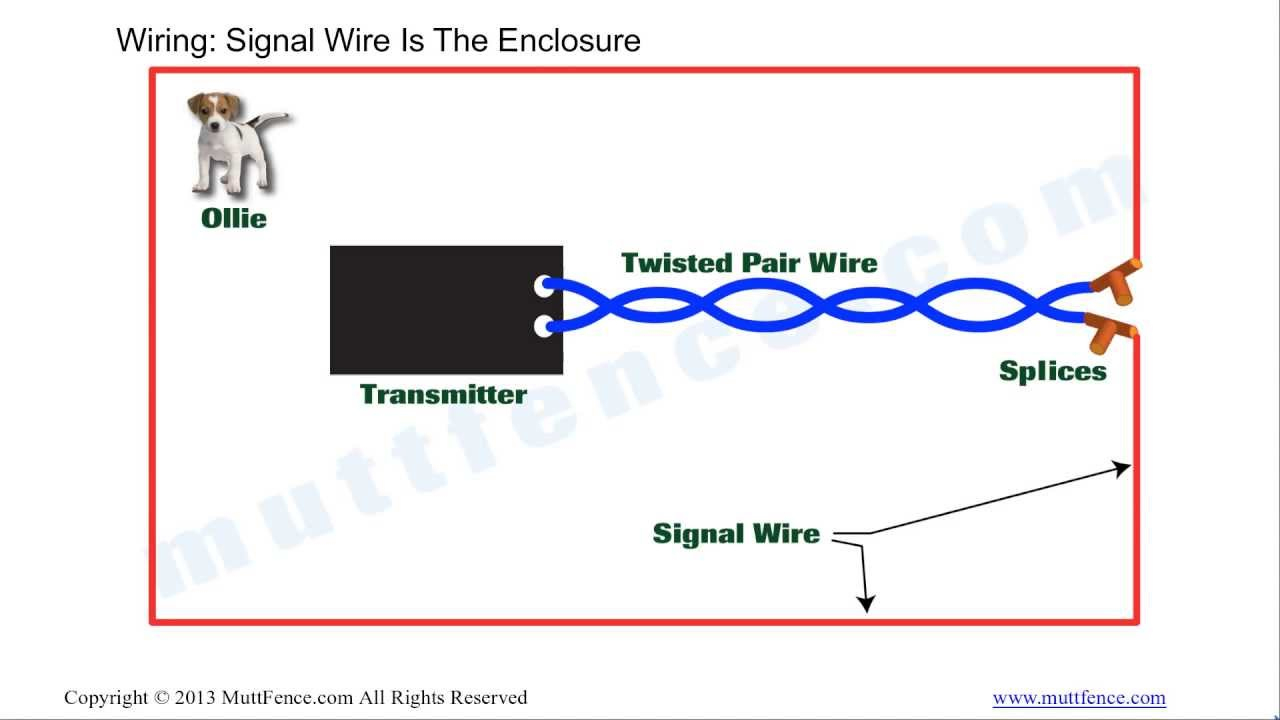 In Ground Fence Wiring Basics - Youtube - Electric Fence Wiring Diagram