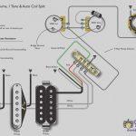 Japanese Fender 5 Way Switch Wiring Diagram   Wiring Block Diagram   Coil Split Wiring Diagram