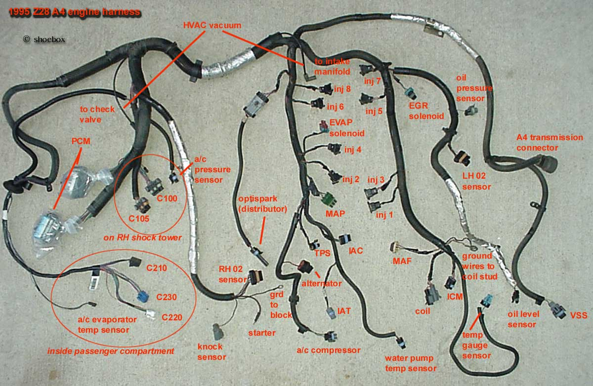 Modifying Ls1 Wiring Harness | Wiring Diagram - Ls1 Wiring Harness Diagram