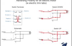 Rocker Switch Wiring Diagrams | New Wire Marine   Carling Rocker Switch Wiring Diagram