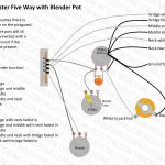 Strat Wiring Diagram   Today Wiring Diagram   Standard Strat Wiring Diagram