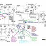Wiring Harness Information   Ls Standalone Wiring Harness Diagram