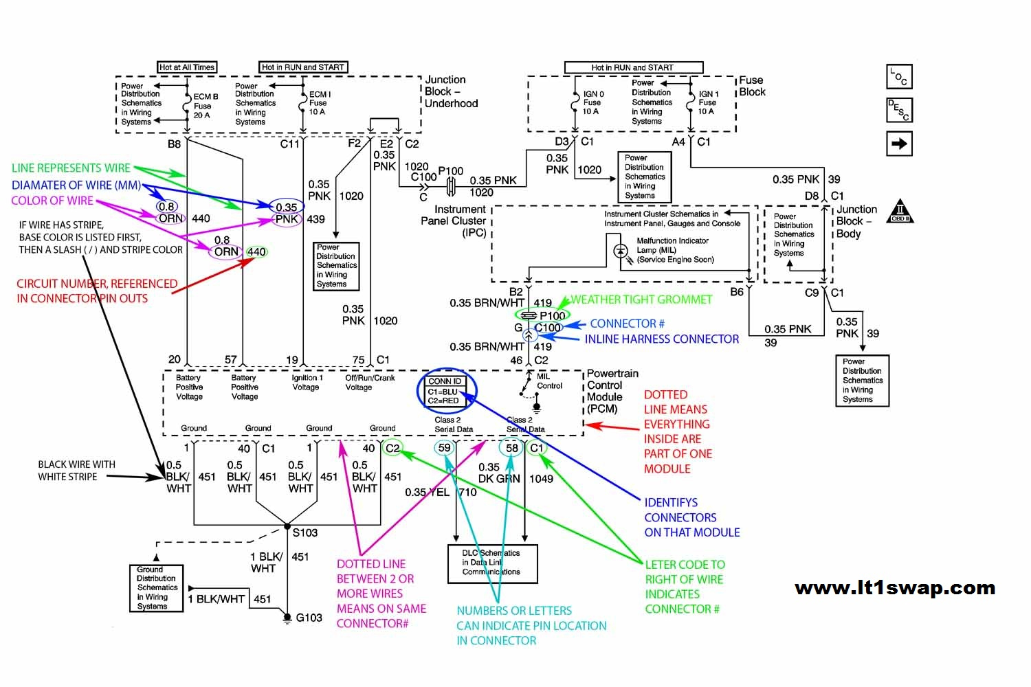 Wiring Harness Information - Ls Wiring Harness Diagram