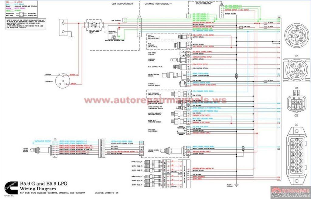 Pleasing Xr80 Wiring Diagram Wiring Diagram Database Wiring Database Gramgelartorg